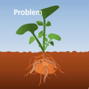 problem-min