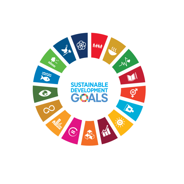wheel-sustainable-development-goals