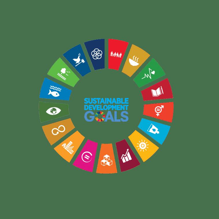 wheel-sustainable-development-goals